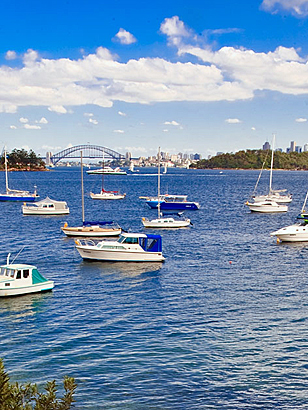 Boats on Sydney Harbour by Richard Taylor